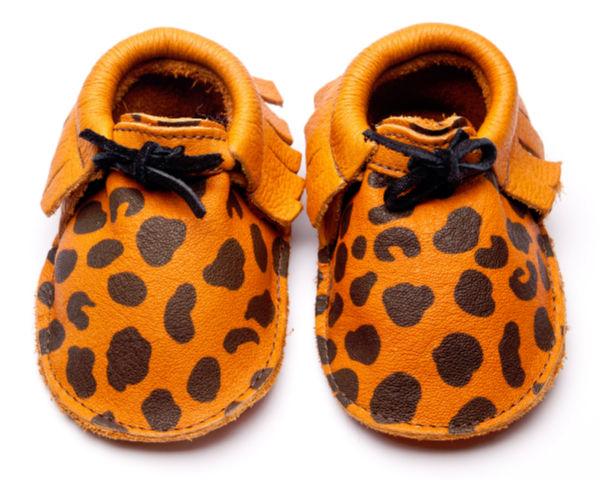 Sahara leopard
